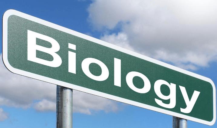 bio-cbd